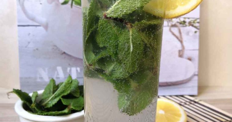 Virgin Mojito Healthy